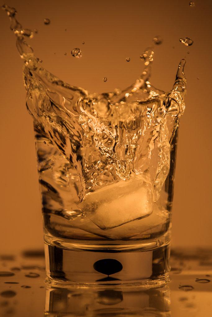 ZuninoNoellert-AM-splash.jpg